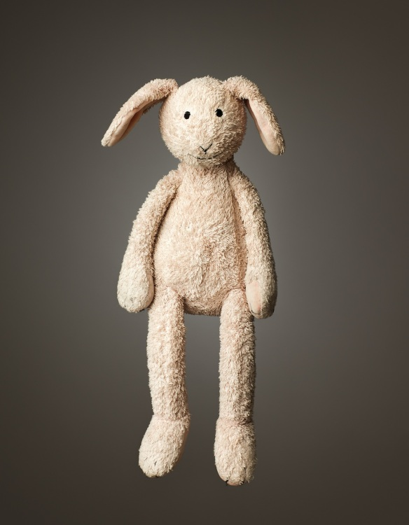 "Daddy Bunny, Age: 8, Height: 14"", Belongs to: Zoe Bracken"